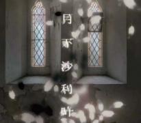 月下沙利叶剧本杀复盘解析攻略【终章完整版】